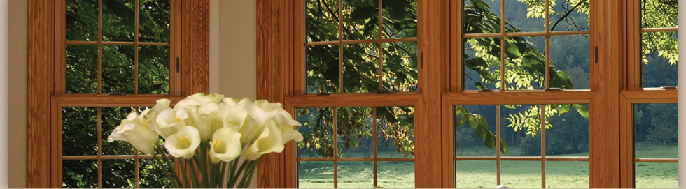 Stanek Replacement Windows Products