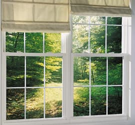Single Hung Window Picture