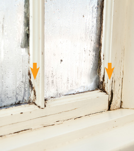 Wood rotting window