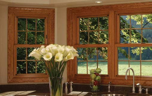 Stanek Wood Window Series Vinyl Woodgrain Windows
